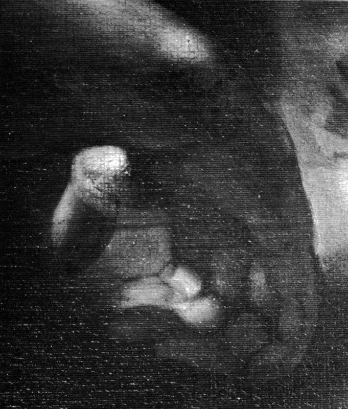 Michele Desubleo, Venere piange la morte di Adone, riflettografia IR: particolare della mano destra di Adone